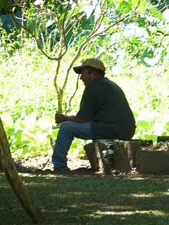Quiniho planejando sua horta